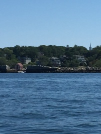 lanes cove from the bay